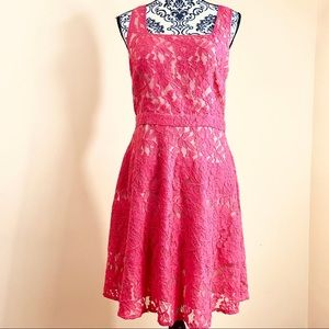 The Limited Sleeveless Beige Pink Lace ALine Dress